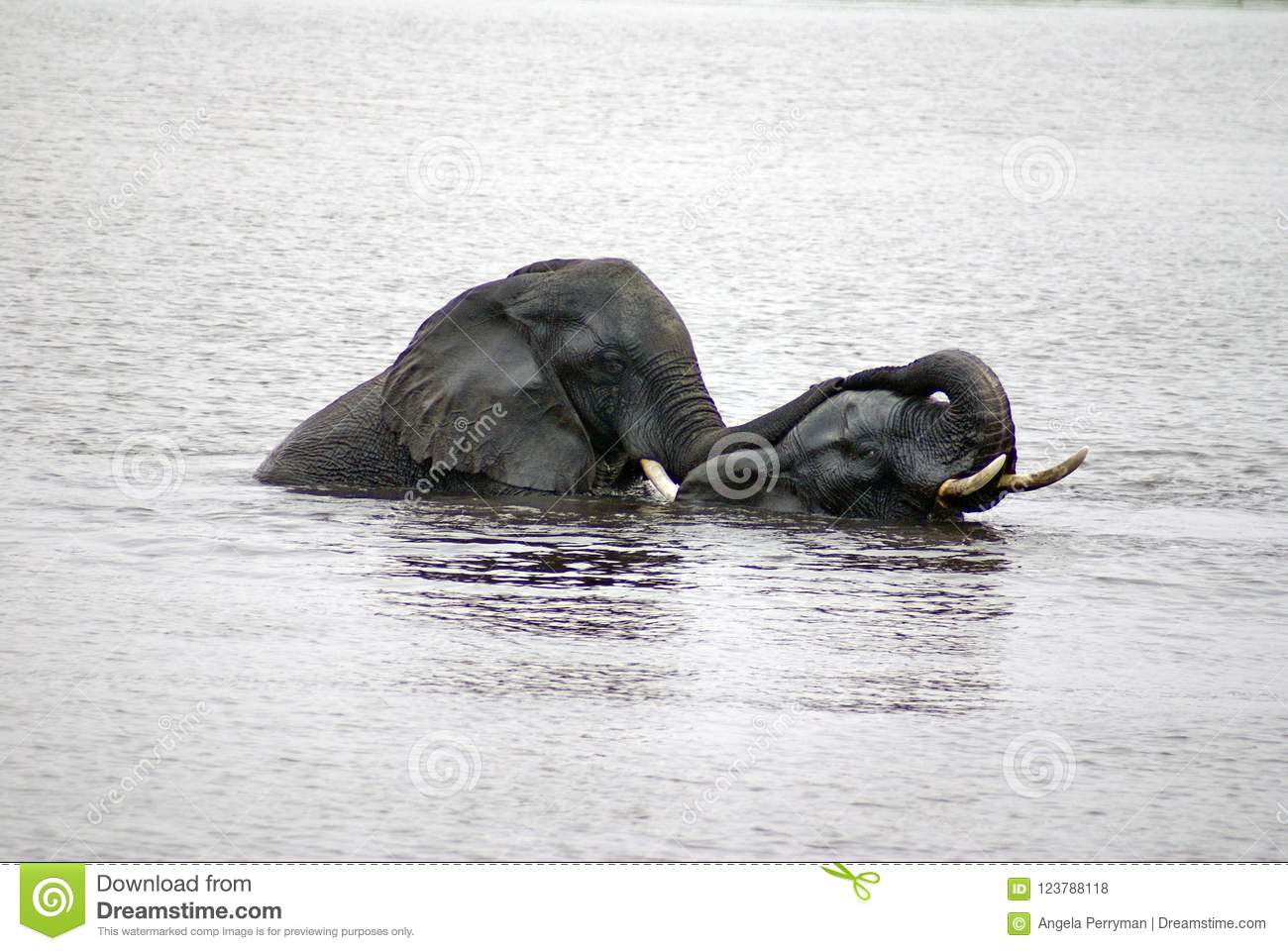 Indian having sex in the river